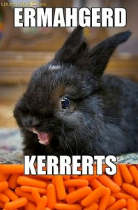 derpiest-ermahgerd-bunny-carrots